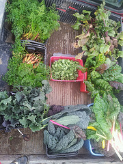 truck bed of veggies